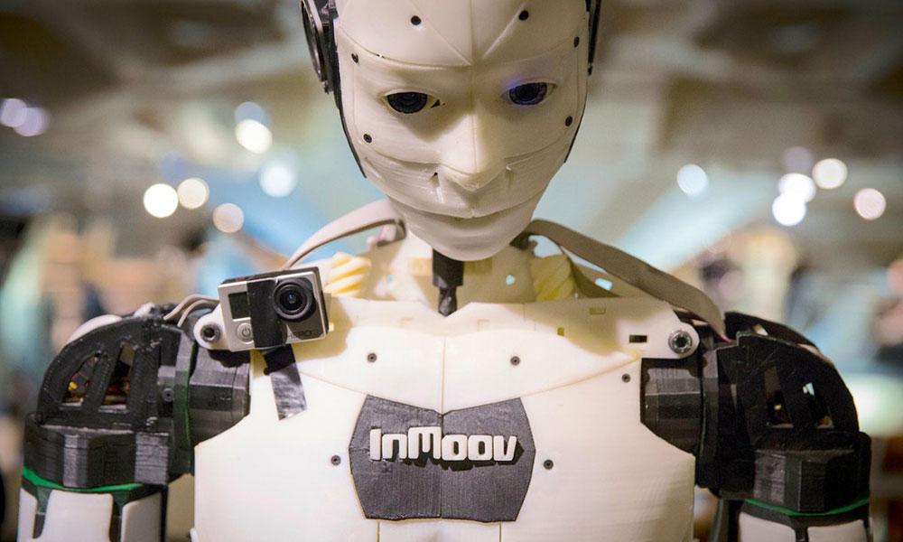 Inmoov Robot background